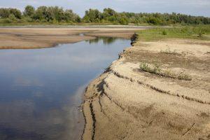 Poziom-wody-w-Wisle-zatrwazajaco-niski.-Rzeka-wysycha-w-zawrotnym-tempie_article