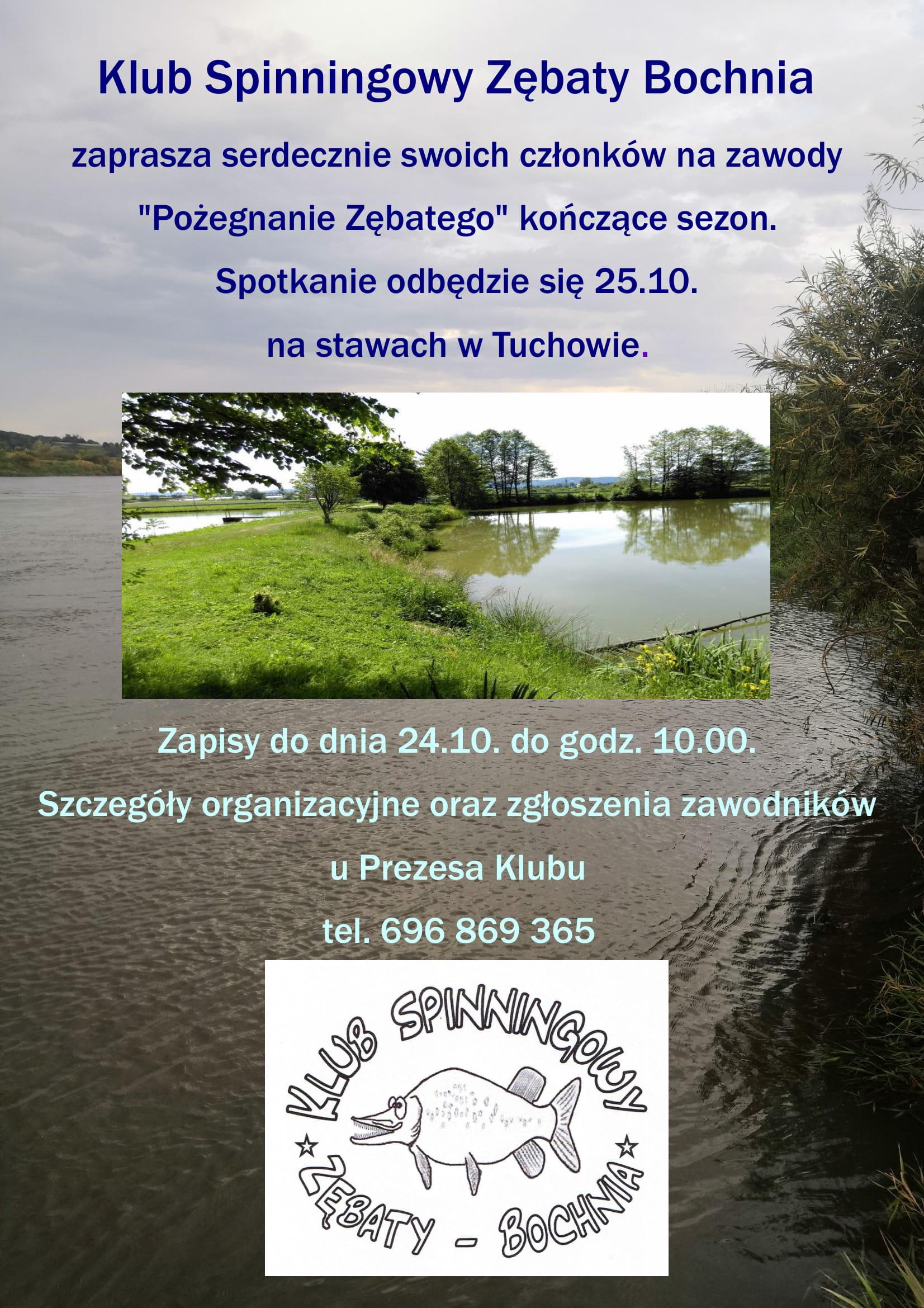pz_2020-1